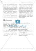 Fermi-Aufgaben - Ähnlichkeiten und Dreiecksberechnungen Preview 8