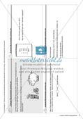 Lerninhalte selbstständig erarbeiten Thema Lineare Gleichungssysteme Preview 3