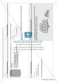Lerninhalte selbstständig erarbeiten Thema Zylinder, Kegel, Pyramide Preview 5