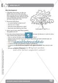Biologieunterricht auf dem Schulhof - Blütenpflanzen in ihrem Lebensraum Preview 15