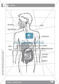 Biologieunterricht auf dem Schulhof - Mensch: Gesund leben Preview 20