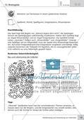 Methoden Biologie: Wiederholung und Anwendung von Gelerntem Preview 18