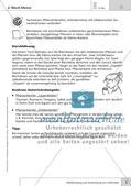 Methoden Biologie: Wiederholung und Anwendung von Gelerntem Preview 7