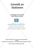 Genetik an Stationen: Grundlagen der Genetik Preview 2