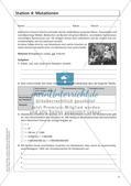 Genetik an Stationen: Regeln und Mechanismen Preview 13