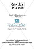 Genetik an Stationen: Regeln und Mechanismen Preview 2