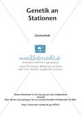 Genetik an Stationen: Gentechnik Preview 2