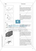 Evolution an Stationen - Die Frühzeit der Erde und Fossilien Preview 17