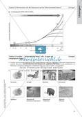 Evolution an Stationen - Die Frühzeit der Erde und Fossilien Preview 29