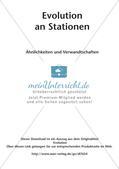Evolution an Stationen - Ähnlichkeiten und Verwandtschaften Preview 2