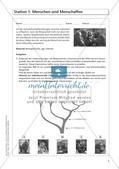 Evolution an Stationen - Die Geschichte des Menschen Preview 7