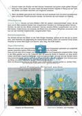 Kunst im Jahreskreis 3: Frühling Preview 12
