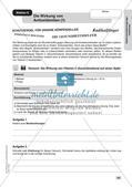 Lernzirkel Elektrochemie: Elektronenübertragungsreaktionen Preview 21