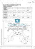 Stoffe und ihre Eigenschaften: Anwendung und Erforschung Preview 32