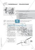 Die schnelle Stunde: Zufallsbilder und Formen Preview 15