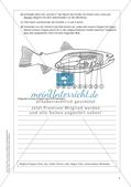 Der Körperbau der Fische Preview 7