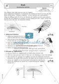 Physik selbst entdecken: Mechanik - Druck Preview 14