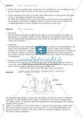Physik selbst entdecken: Mechanik - Druck Preview 23