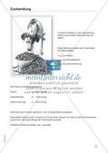 Mathe im Berufsalltag/Einzelhandel: Futtermischungen berechnen Preview 7