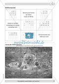 Training der Grundfähigkeiten: Schriftliche Rechenverfahren Preview 5
