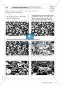 Natürliche Zahlen: Materialien in zwei Differenzierungsstufen Preview 7