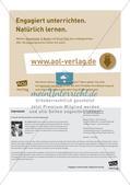 Koordinatensystem und Achsenspiegelung: Materialien in zwei Differenzierungsstufen Preview 16