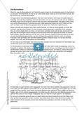 Rhythmen, Rituale und Ordnungen: Die Murmeltiere Preview 7