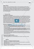 Kooperative Methoden: Das Labyrinth des Lebens Preview 3