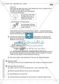 Kooperative Methoden: Das Labyrinth des Lebens Preview 5