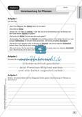 Stationenarbeit: Formen von Verantwortung Preview 11