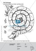 Rechenmandalas: Multiplikation und Division Preview 12