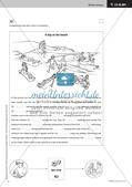 Kooperative Methoden zu Present tenses Preview 9