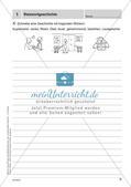 Lernkontrollen: Schreiben und sinnentnehmendes Lesen Preview 3