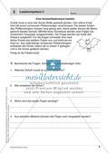 Lernkontrollen: Schreiben und sinnentnehmendes Lesen Preview 7
