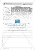 Lernkontrollen: Schreiben und sinnentnehmendes Lesen Preview 8
