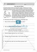 Lernkontrollen: Schreiben und sinnentnehmendes Lesen Preview 9