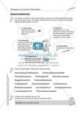 LRS: Mitsprechwörter Preview 3