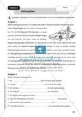 Rechtschreibung: Groß- und Kleinschreibung Preview 7