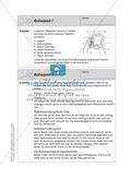 Bewegte Hausaufgaben: Mit Texten und Medien umgehen Preview 15