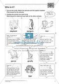 Lernwerkstatt Zoo: Englische Tiernamen Preview 9
