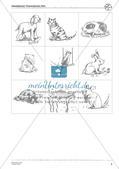Wortschatzarbeit: Pets Preview 5