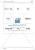 Wortschatzarbeit: Pets Preview 6