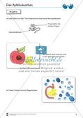 Fingerdruck: Erstellen kleiner Bücher Preview 5