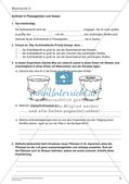 Mechanik der Flüssigkeiten und Gase Preview 11