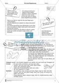 Vermittlung lebenspraktischer Kompetenzen: Regelblutung Preview 4