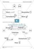 Leseerwerb: Akustische Wahrnehmung - Wortlängen Preview 5