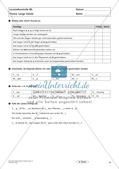 Lernzielkontrollen Klasse 8: Richtig schreiben Preview 8