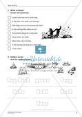 Wortschatzarbeit: Gassi gehen und Arztbesuch Preview 4