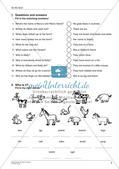 Wortschatzarbeit: Einkaufen und Bauernhof Preview 7