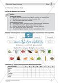 Gesunde Ernährung: Einfaches Niveau Preview 12